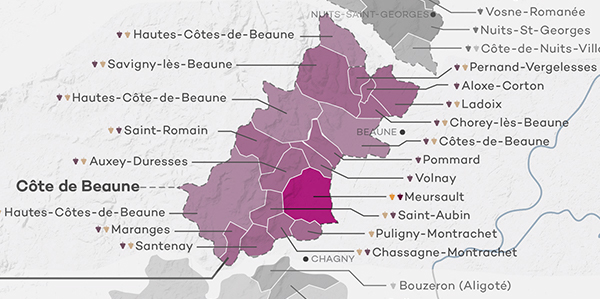 Tour of the Lieux-dits & 1er Crus of Meursault via the Best Producers