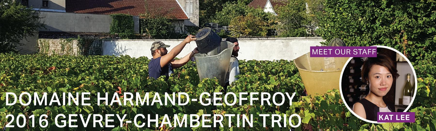 Fine Wine Friday: Domaine Harmand-Geoffroy 2016 Gevrey-Chambertin Trio