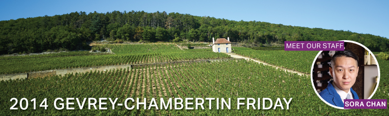 Fine Wine Friday: 2014 Gevrey-Chambertin Friday