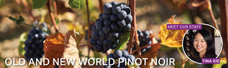 Fine Wine Friday: Old and New World Pinot Noir