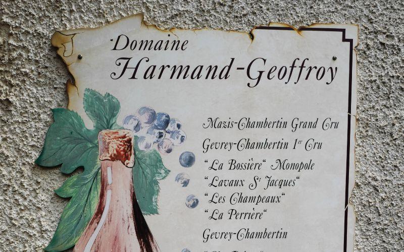 MasterClass 1: Domaine Harmand-Geoffroy in Mazis-Chambertin Masterclass